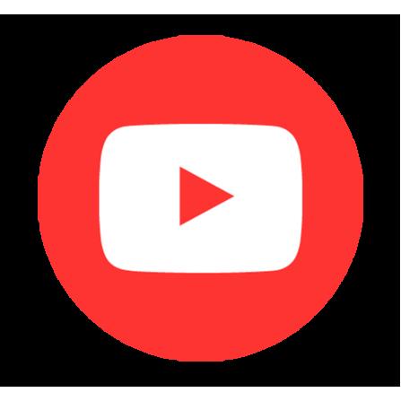 YouTube views embedding (1000).